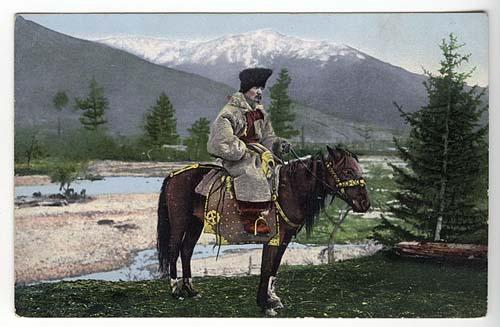 Altai Horse photo