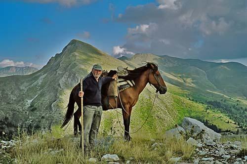 Pindos Pony photo